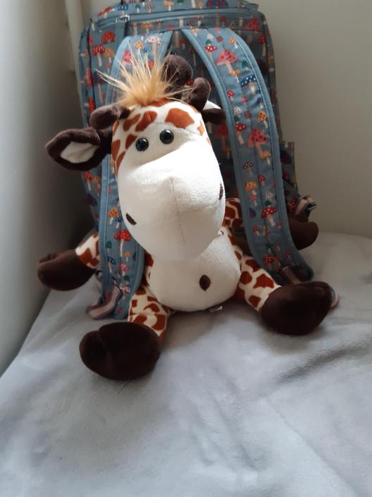 I am soI am so sorry you have not heard anything from Geraldine the past couple of days she has been busy in school with Miss Boulton and she has her bag all packed ready for today! Stay happy and safe!