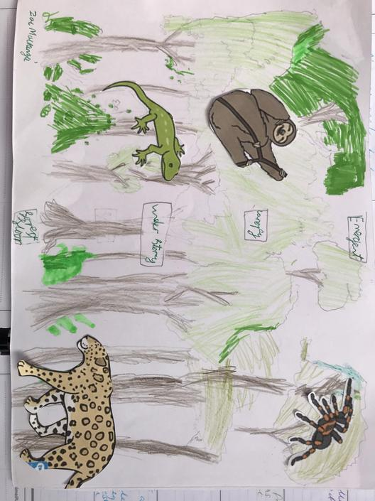 Wow I can tell someone loved learning about the rainforest this week! Keep up this amazing work.