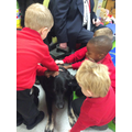 This is Jet, we learnt how to look after animals.