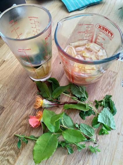 Ella's rose and lemon balm perfume⭐