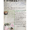 Mabel's writing about the (red) panda!