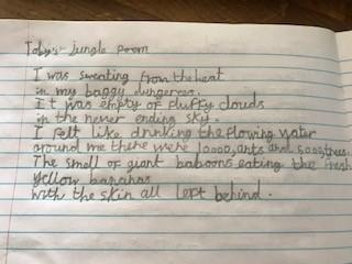 Toby's great jungle poem