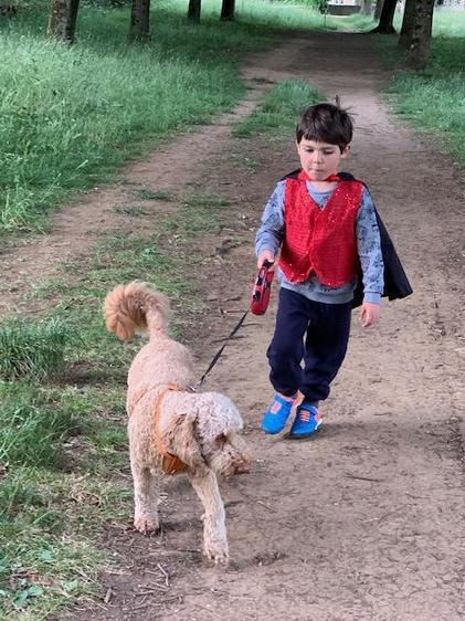 Luke enjoyed lots of dog walks this week⭐
