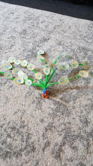 Joshua made a fantastic peacock ⭐️