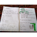 Maisey's rainforest writing