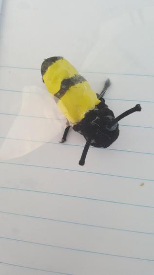 What a brilliant bug!⭐️