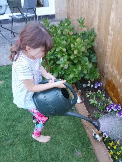 Hollie, the garden looks fantastic ⭐️