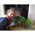 Maisey's rainforest animals