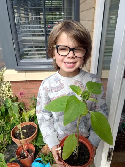 Jacob has been an excellent gardener ⭐