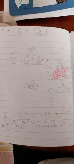 Henry wrote a sentence about his special trip⭐