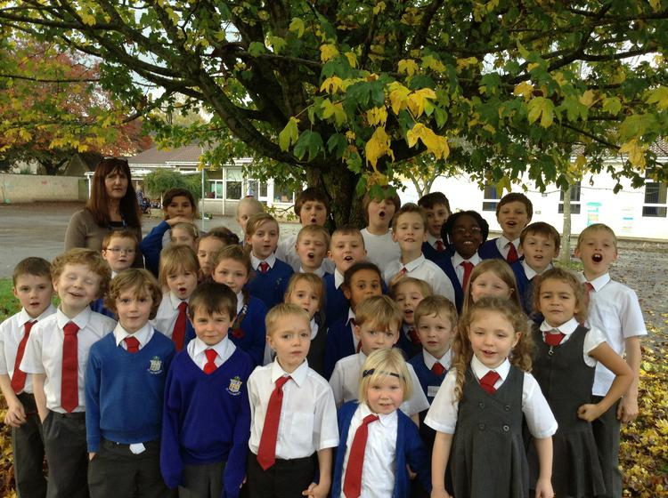 Meet your Forest School Council representatives!