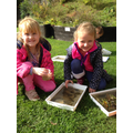 Identifying canal water creatures.
