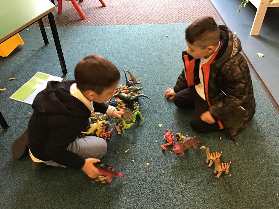 We have developed our sharing skills by creating our own dinosaur land!