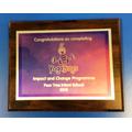 Yoga Bugs Award 2018