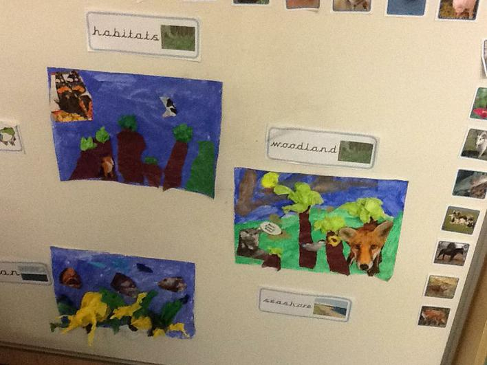 Collage pictures in Year 1