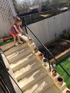 Looking after those seedlings