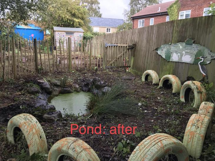 Pond: after