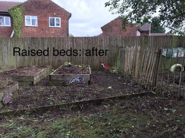 Raised beds: after