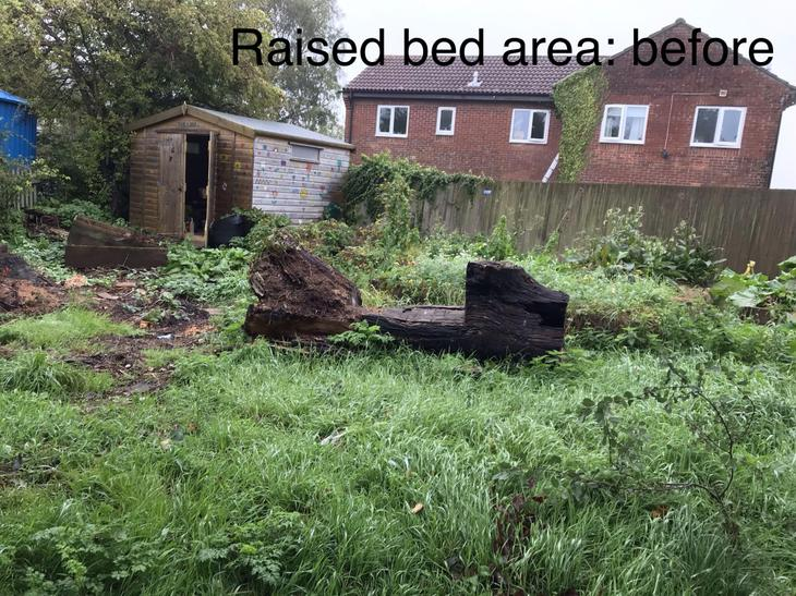 Raised bed area: before