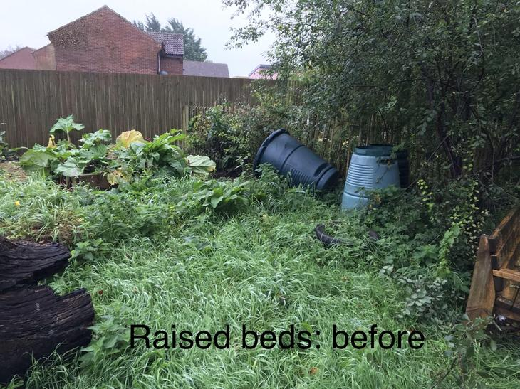 Raised beds: before