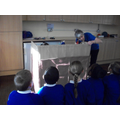 CRiBs KS2 Workshop
