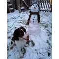 THE MOST IMPRESSIVE ONE MADE BY A DOG: Seb's Dog - Snowman