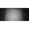 Evan's Roald Dahl mind map