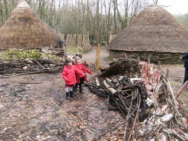 The burnt wood