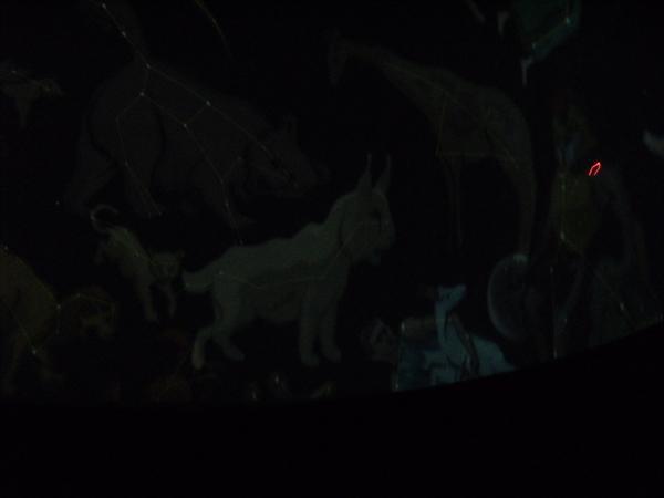 Inside the Planetarium