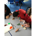 Painting our dried 'fossils.'