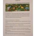 Margarita's Rainforest Facts