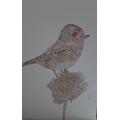 Harrison's Pointillism Goldfinch