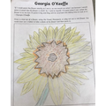 Kieran's Georgia O'Keeffe flower