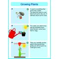 Oskar's Growing Plants Poster