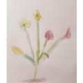 Aden's Georgia O'Keeffe artwork