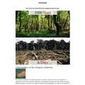 Margarita's deforestation poster