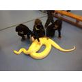 Ian the Python