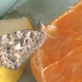 Enjoying a juicy orange