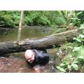 Extreme Stream