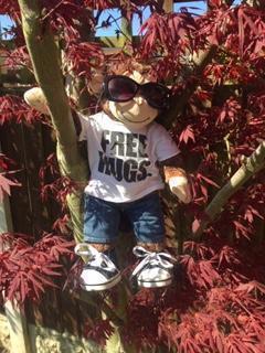 Charlie loves climbing trees.