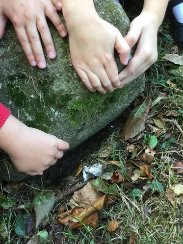 Under rocks