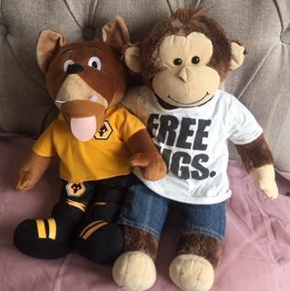 Charlie watching Wolves v Villa with Wolfie!