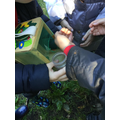 We found all kinds of minibeasts.