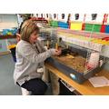 The ducklings meet Mrs Burke