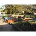 Our Eco Garden.