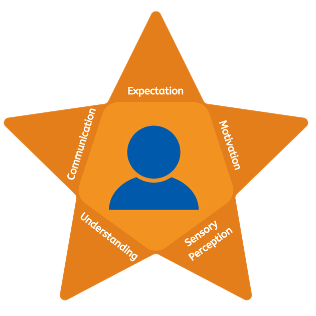 Autism Initiatives 5 point star