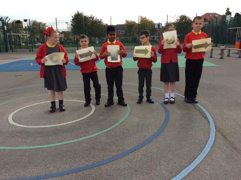 Class 7: science outside and show us food chains.