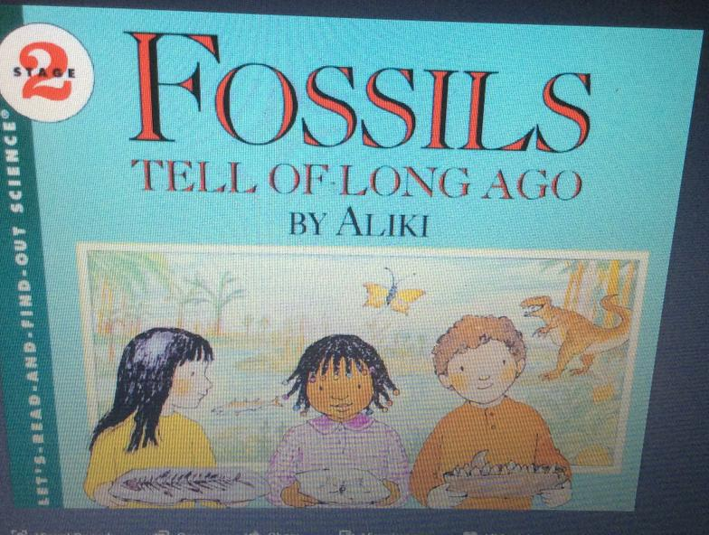 A great non fiction science book. Age 4-8yrs.