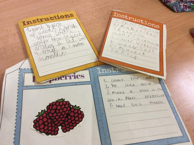 Year 2 designed and made their own seed packet.
