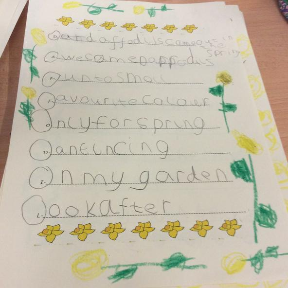 Y2 learnt about daffodils using acrostic poems.